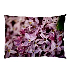 Purple Lilacs Pillow Cases