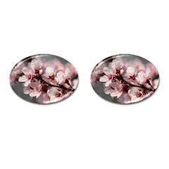Plum Blossoms Cufflinks (oval) by trendistuff