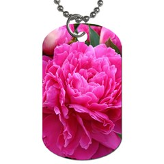 Paeonia Eleanor Dog Tag (two Sides) by trendistuff