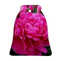 Paeonia Eleanor Bell Ornament (2 Sides) by trendistuff