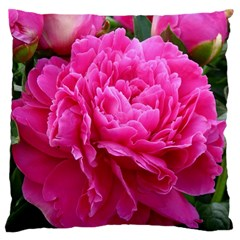 Paeonia Eleanor Large Cushion Cases (one Side)
