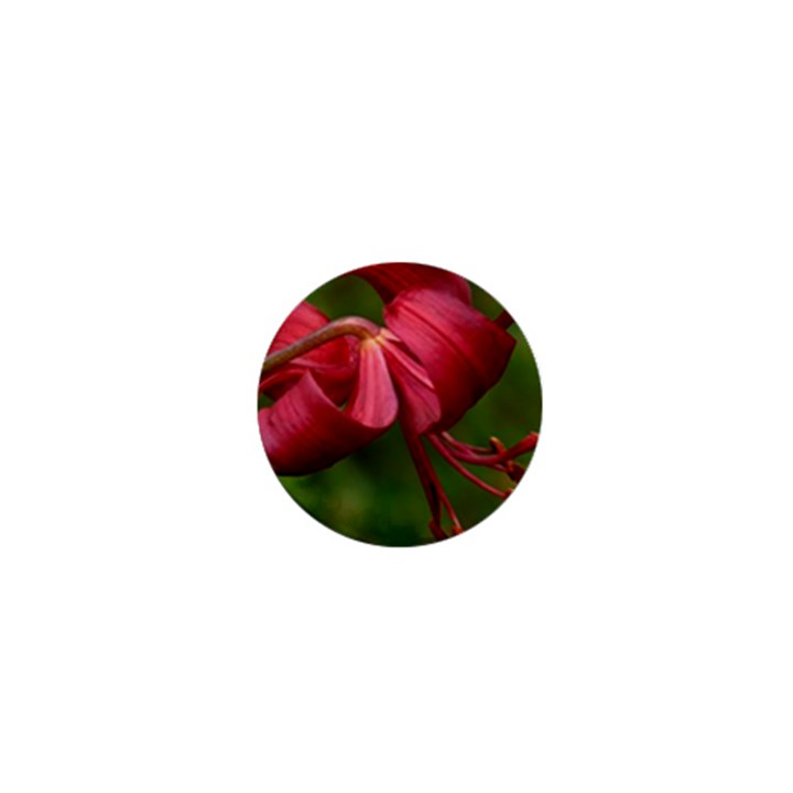 LILIUM RED VELVET 1  Mini Buttons
