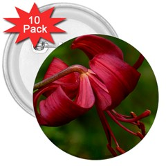 Lilium Red Velvet 3  Buttons (10 Pack)  by trendistuff