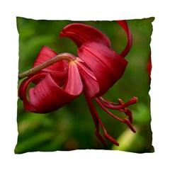 Lilium Red Velvet Standard Cushion Case (one Side)  by trendistuff