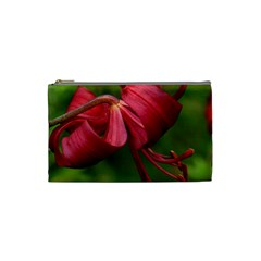 Lilium Red Velvet Cosmetic Bag (small)  by trendistuff