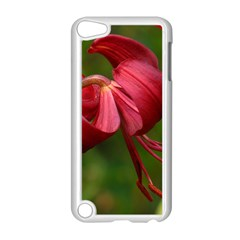 Lilium Red Velvet Apple Ipod Touch 5 Case (white) by trendistuff