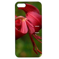 Lilium Red Velvet Apple Iphone 5 Hardshell Case With Stand by trendistuff