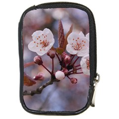 Cherry Blossoms Compact Camera Cases by trendistuff