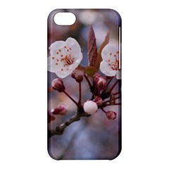 Cherry Blossoms Apple Iphone 5c Hardshell Case by trendistuff