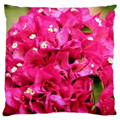 Bougainvillea Large Cushion Cases (one Side)