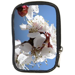 Apricot Blossoms Compact Camera Cases by trendistuff