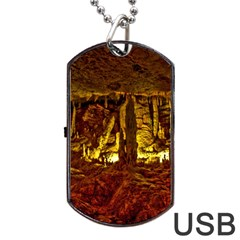 Volcano Cave Dog Tag Usb Flash (two Sides)  by trendistuff