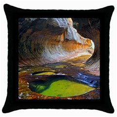 Left Fork Creek Throw Pillow Cases (black) by trendistuff