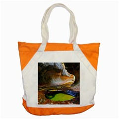 Left Fork Creek Accent Tote Bag  by trendistuff