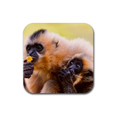 Two Monkeys Rubber Coaster (square)  by trendistuff