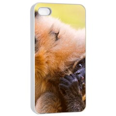 Two Monkeys Apple Iphone 4/4s Seamless Case (white) by trendistuff