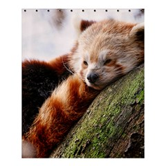 Red Panda Shower Curtain 60  X 72  (medium)