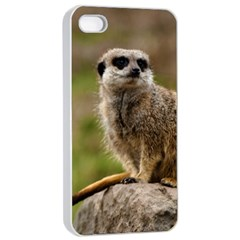 Meerkat Apple Iphone 4/4s Seamless Case (white) by trendistuff