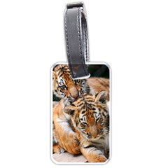 Baby Tigers Luggage Tags (one Side)  by trendistuff