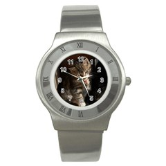 Talk To The Paw Stainless Steel Watches by trendistuff