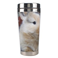 Small Baby Rabbits Stainless Steel Travel Tumblers by trendistuff