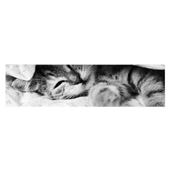 Sleepy Kitty Satin Scarf (oblong)