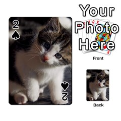 Questioning Kitty Playing Cards 54 Designs  by trendistuff