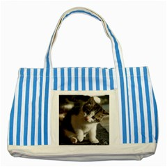Questioning Kitty Striped Blue Tote Bag  by trendistuff