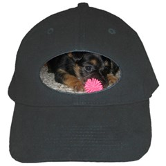Puppy With A Chew Toy Black Cap