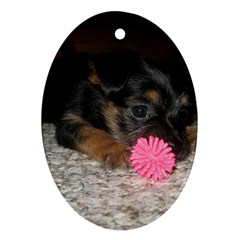 Puppy With A Chew Toy Ornament (oval)  by trendistuff