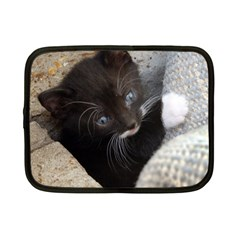 Pretty Blue Eyed Kitty Netbook Case (small)  by trendistuff