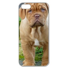 Cute Wrinkly Puppy Apple Seamless Iphone 5 Case (clear) by trendistuff