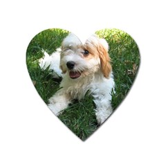 Cute Cavapoo Puppy Heart Magnet by trendistuff