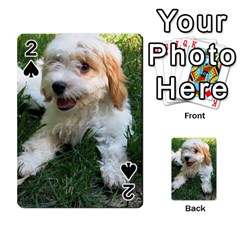 Cute Cavapoo Puppy Playing Cards 54 Designs  by trendistuff