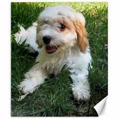 Cute Cavapoo Puppy Canvas 20  X 24   by trendistuff