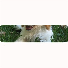 Cute Cavapoo Puppy Large Bar Mats by trendistuff