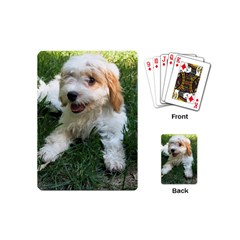 Cute Cavapoo Puppy Playing Cards (mini)