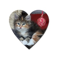 Comfy Kitty Heart Magnet by trendistuff