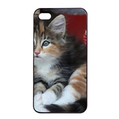 Comfy Kitty Apple Iphone 4/4s Seamless Case (black) by trendistuff