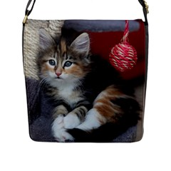Comfy Kitty Flap Messenger Bag (l)  by trendistuff
