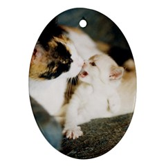 Calico Cat And White Kitty Ornament (oval)