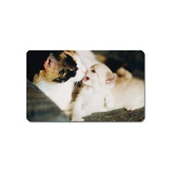 Calico Cat And White Kitty Magnet (name Card) by trendistuff