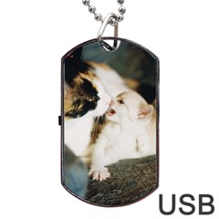 Calico Cat And White Kitty Dog Tag Usb Flash (two Sides)  by trendistuff