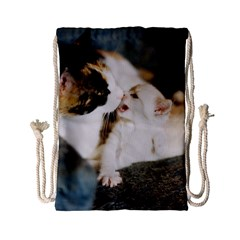 Calico Cat And White Kitty Drawstring Bag (small) by trendistuff