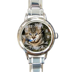 Blue-eyed Kitty Round Italian Charm Watches by trendistuff