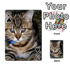 Blue Eyed Kitty Playing Cards 54 Designs  by trendistuff