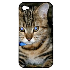 Blue Eyed Kitty Apple Iphone 4/4s Hardshell Case (pc+silicone) by trendistuff