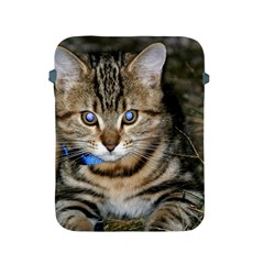 Blue Eyed Kitty Apple Ipad 2/3/4 Protective Soft Cases by trendistuff