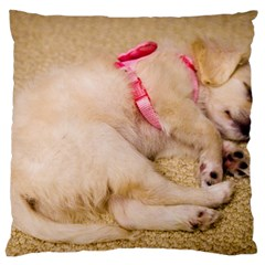 Adorable Sleeping Puppy Large Cushion Cases (two Sides)  by trendistuff