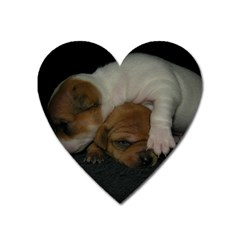 Adorable Baby Puppies Heart Magnet by trendistuff
